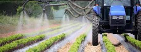 Amilo - Les taux de pesticides