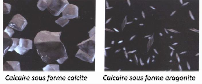 AMILO Traitement naturel du calcaire 2