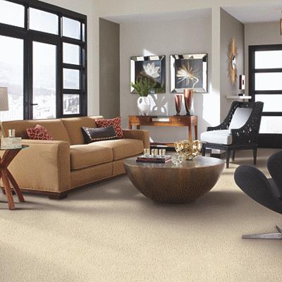 carpet 12.png