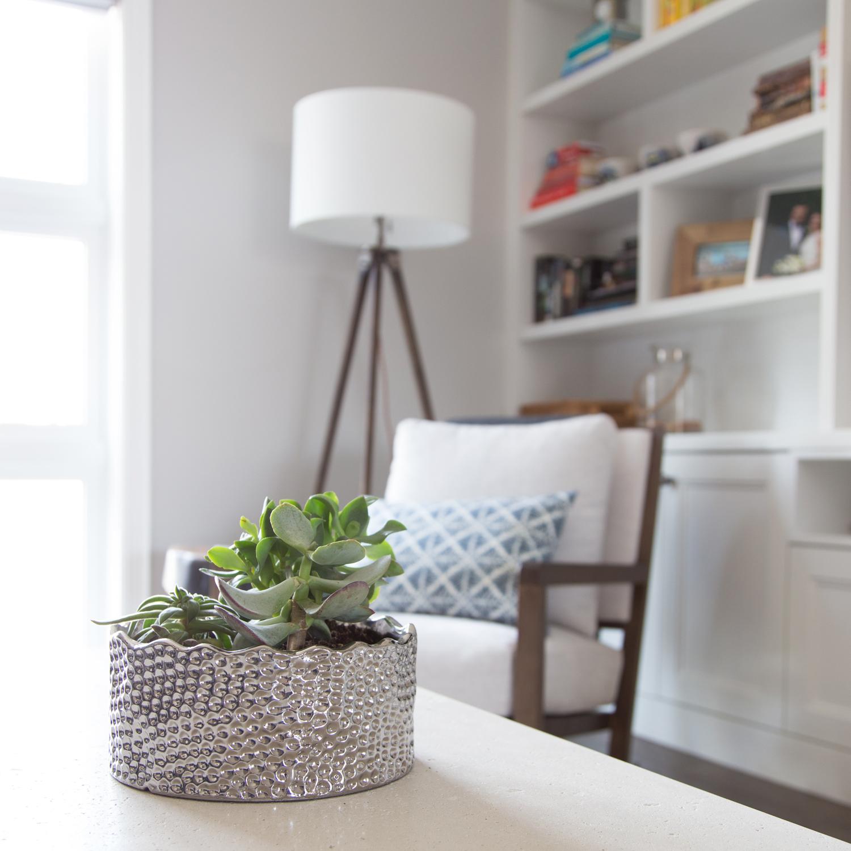 succulent-plant-in-metal-pot