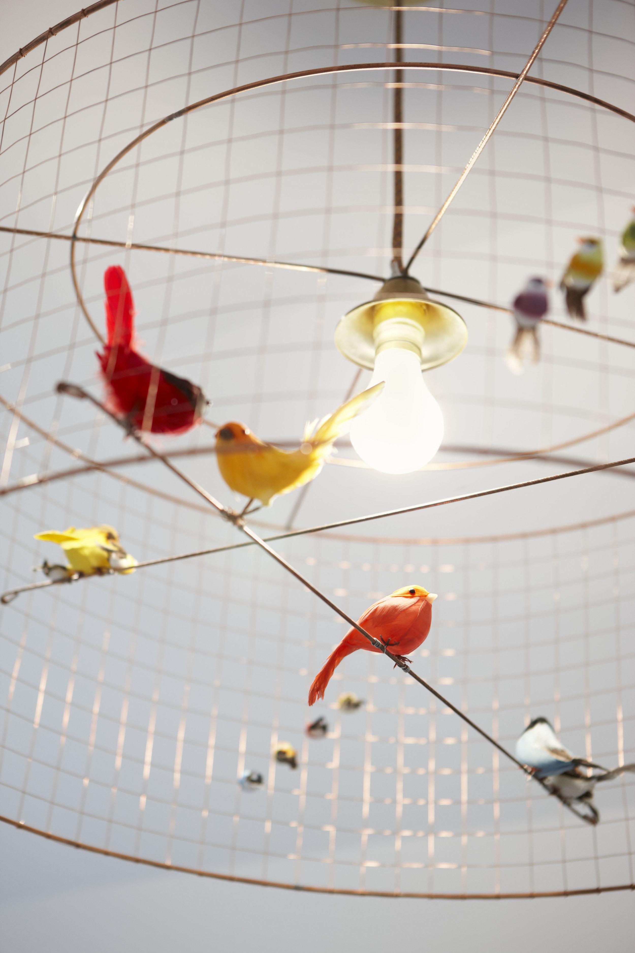 bird-cage-lighting-fixture