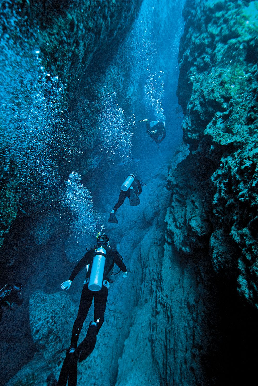 Divers exploring Andros's Ocean Blue Hole, an underwater cave system. - Jad Davenport