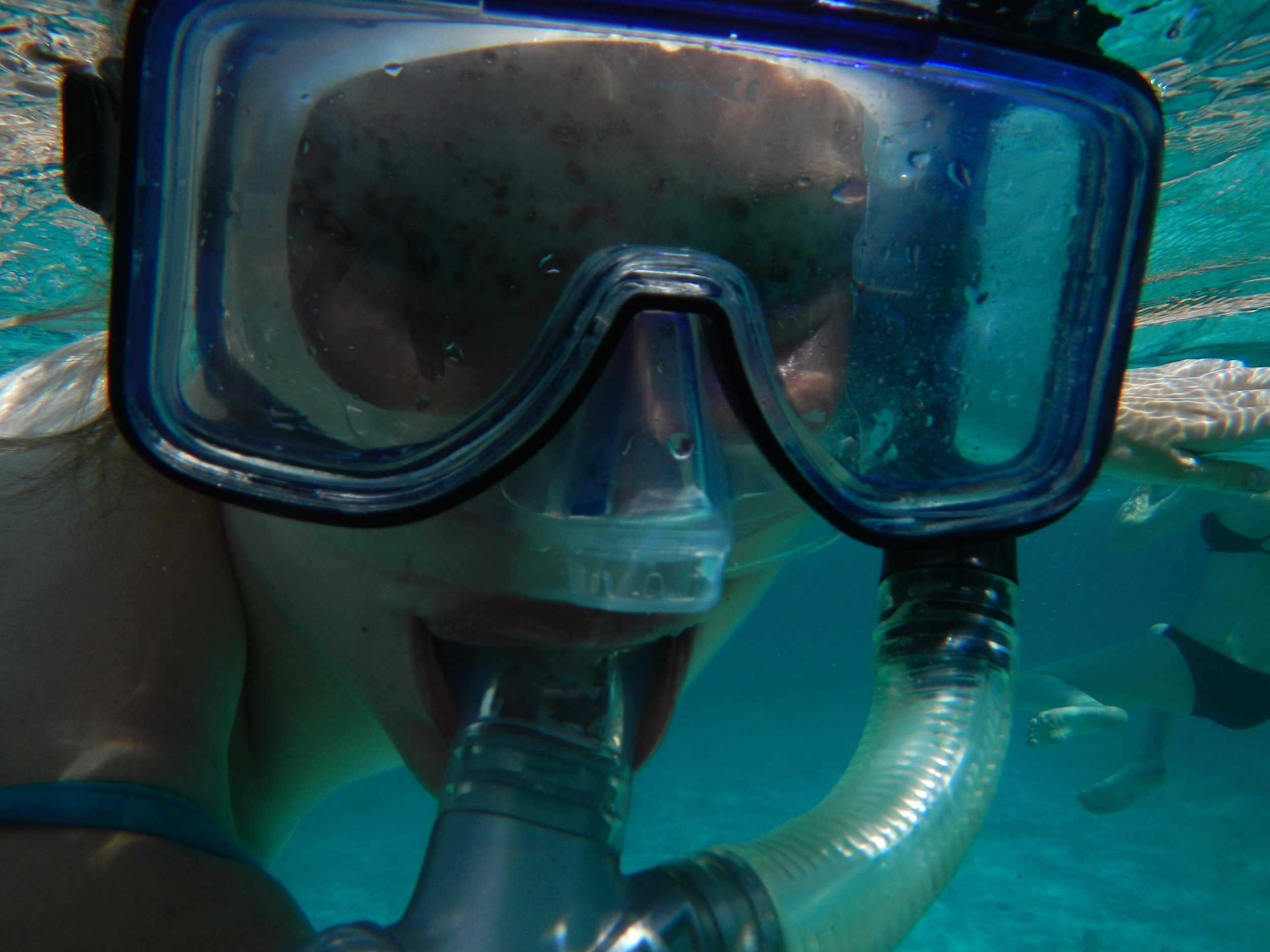 scuba-snorkel-bahamas-treasure-coral-padi-stuart-cove's-smith-shark-dive-temperature-bahamas-water-warm-bathing-suit-goggles-fins-tank-regulator-deep-shallow-blake-lively-nurse-sharks-bite-underwater