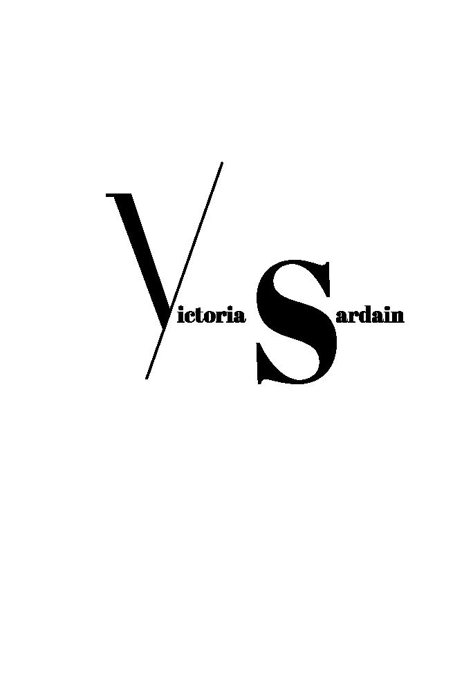 VS LOGO_V2.png