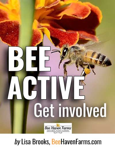 Free Download - Join the save-the-bees movement, become a bee activist. Town Hall event flier, bee education flier, plus two Facebook image posts included.