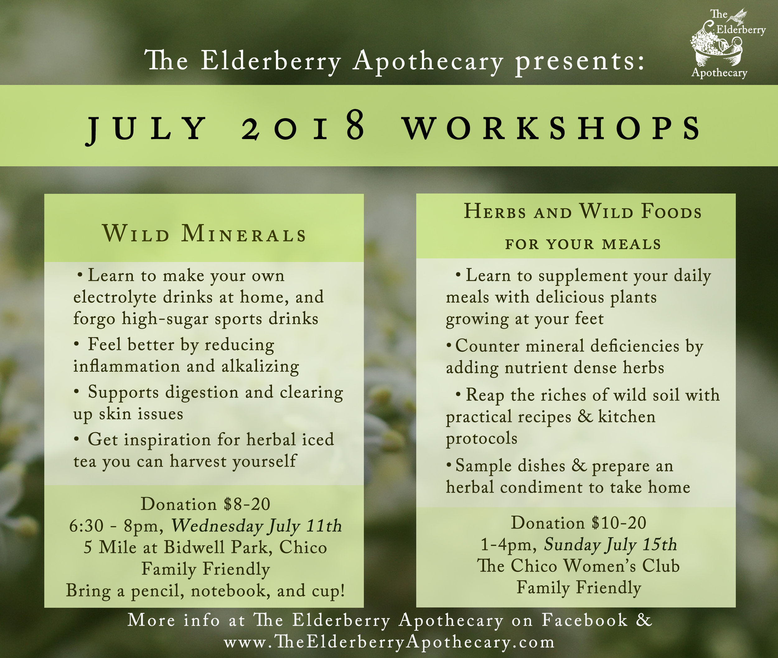 july2018 workshops .jpg