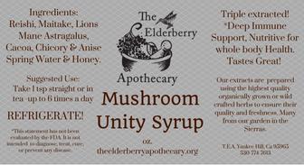 Mushroom+Unity.png