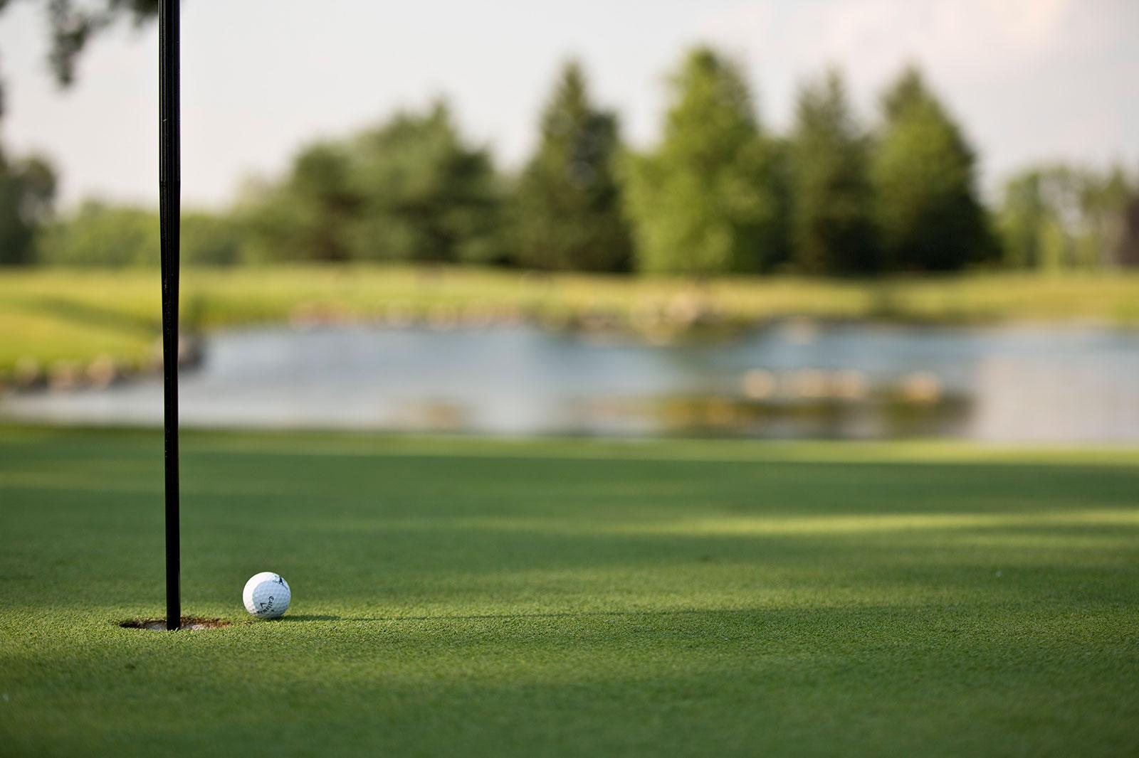 TCC-FW-Banner-1600x1066-Golf-3.jpg