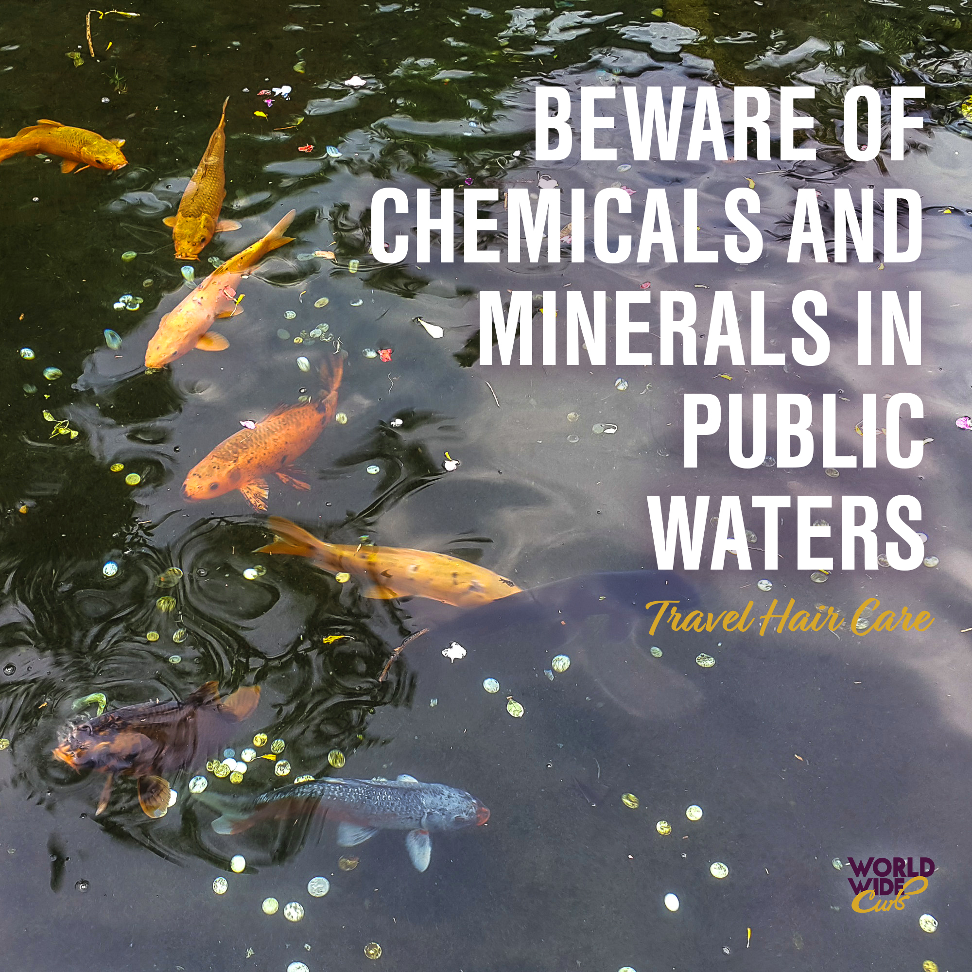 Harsh Chemicals.jpg