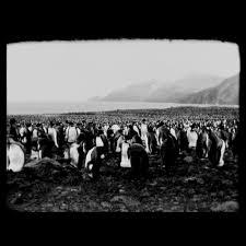 End of Summer - 2014Director: Jóhann JóhannssonMusic: Hildur Guðnadóttir, Jóhann Jóhannsson and Robert A. A. Lowe