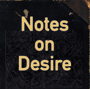 """The fantasies themselves are the realization of desire."" - Notes on Desire"