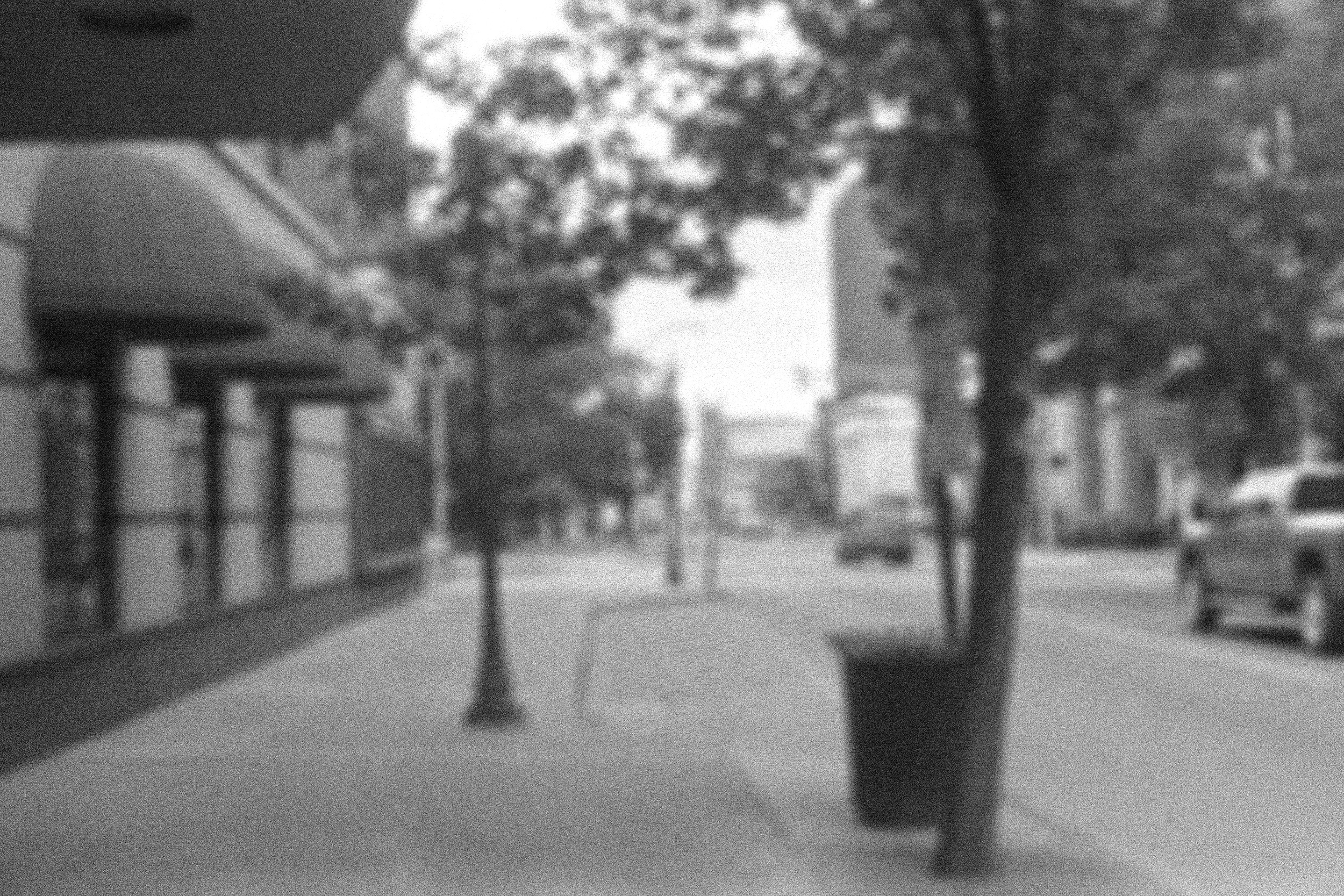 pine street for printing.jpg