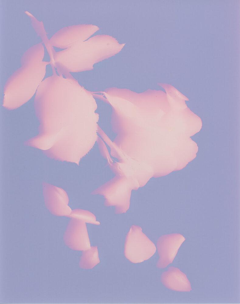 lumen008.jpg