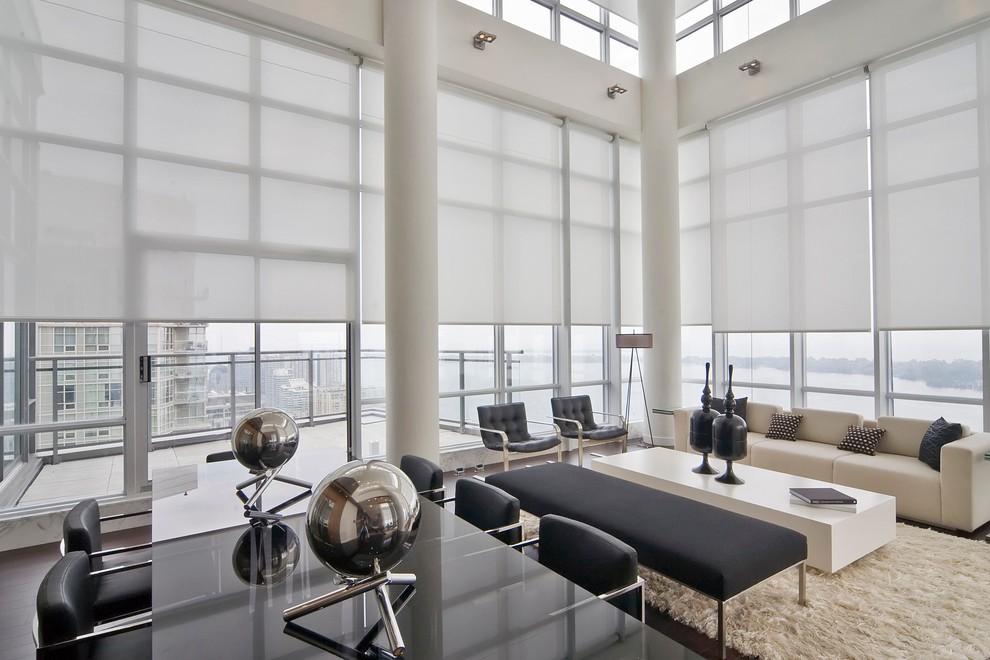 Handsome-Roller-Shade-house-designs-Modern-Living-Room-Orange-County.jpg