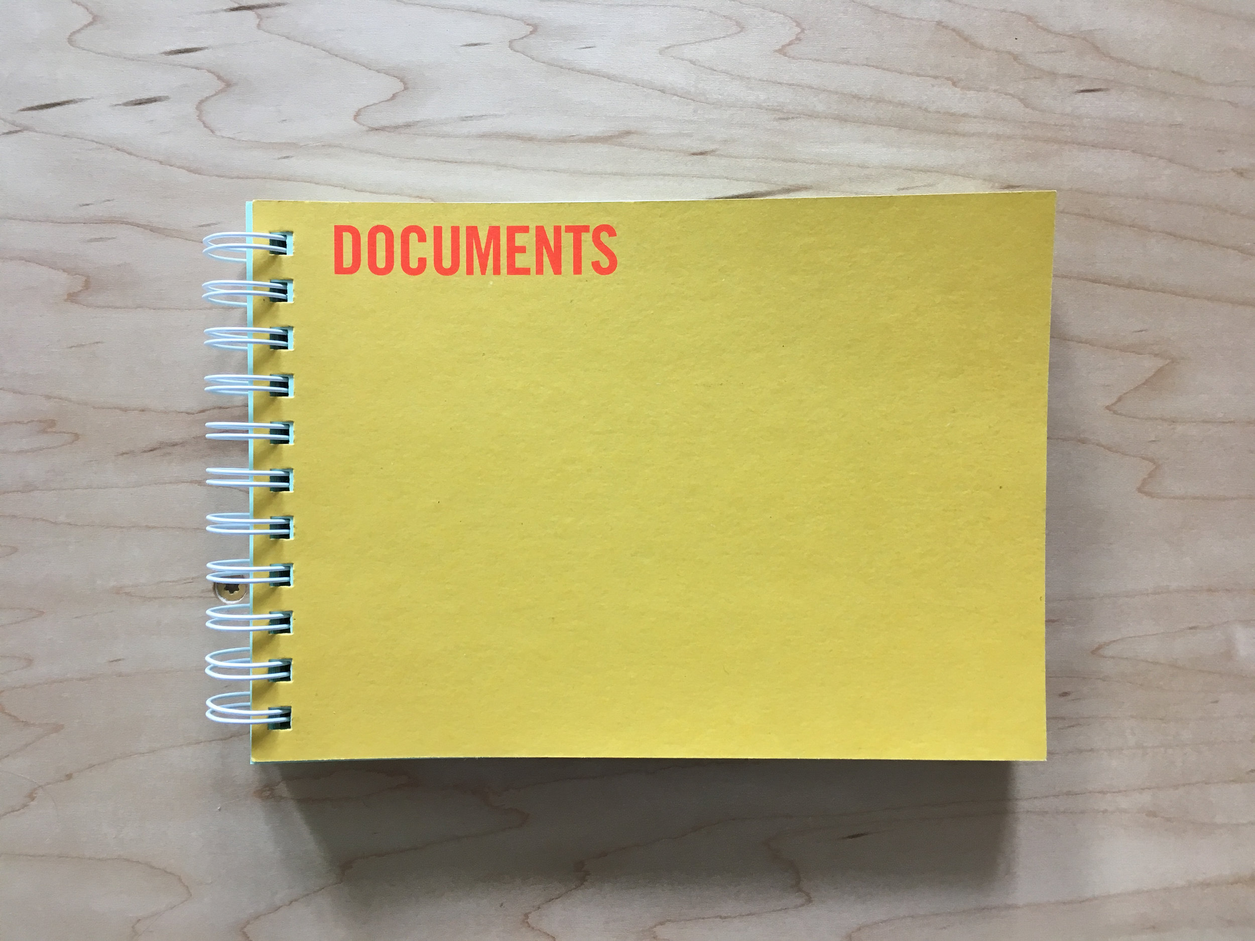 Cover:  Documents, Jérôme Saint-Loubert Bié , with texts by Cécile Dazord and Yann Sérandour (Paris: Atelier Cardenas Bellanger and École des Beaux-Arts de Rennes, 2006).
