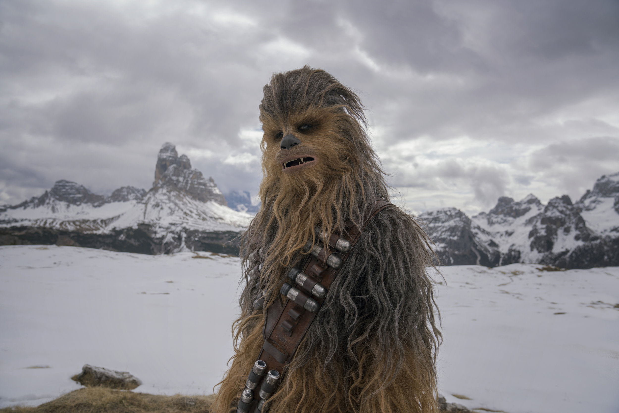 (Insert indecipherable, vaguely threatening, but also kind of adorable, growl here) (Photo courtesy Lucasfilm/Disney)