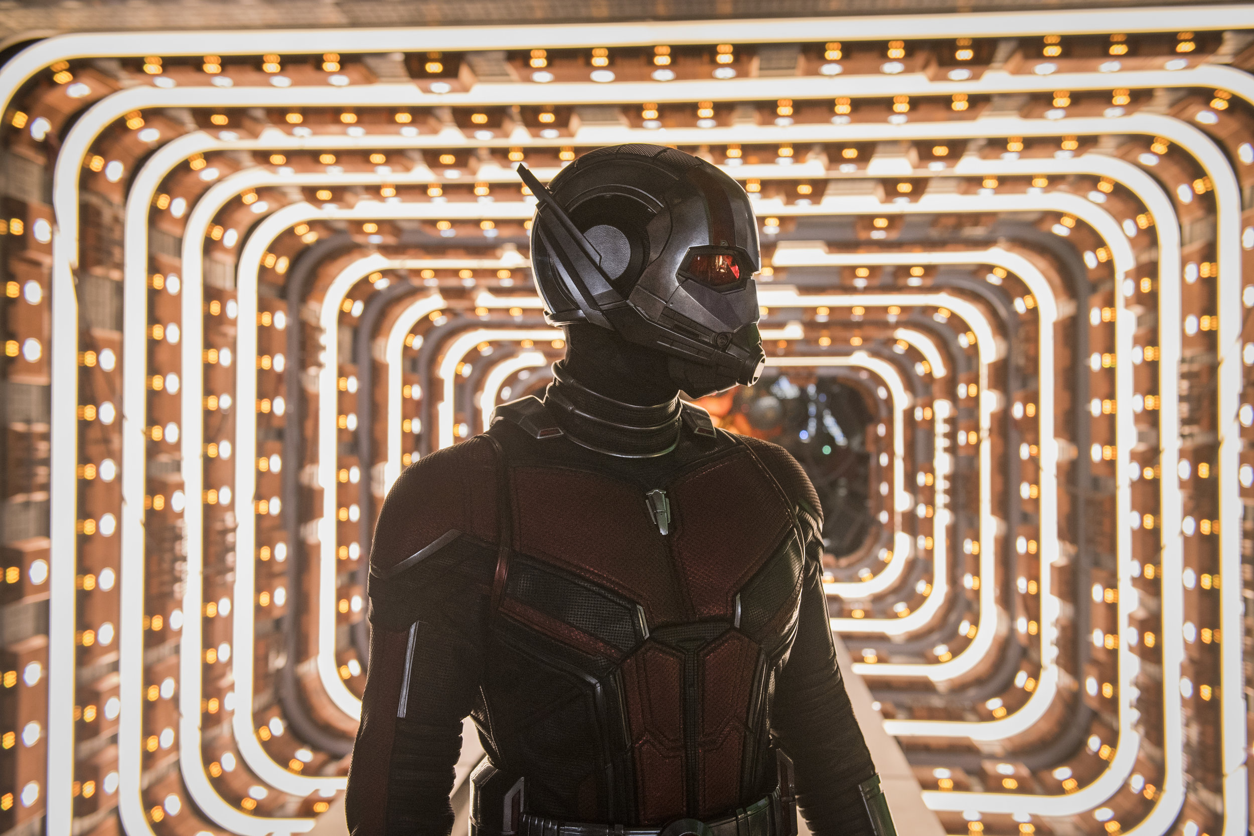 """Paul Rudd is Ant-Man in """"Ant-Man and the Wasp."""" (Photo courtesy Disney/Marvel)"""