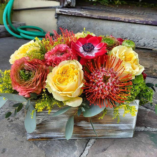 Spring is upon us. We love making our colorful flower boxes.  #bestoflagunabeach #flowers #flowers #floral #florals #flowerlovers #flowerlove #blooms #instablooms #flowersofinstagram #flowerarrangement #floralarrangement #flowerstagram #instaflowers #beautiful #florist #lagunabeach #flower_daily #floraldesign #flowerdesign