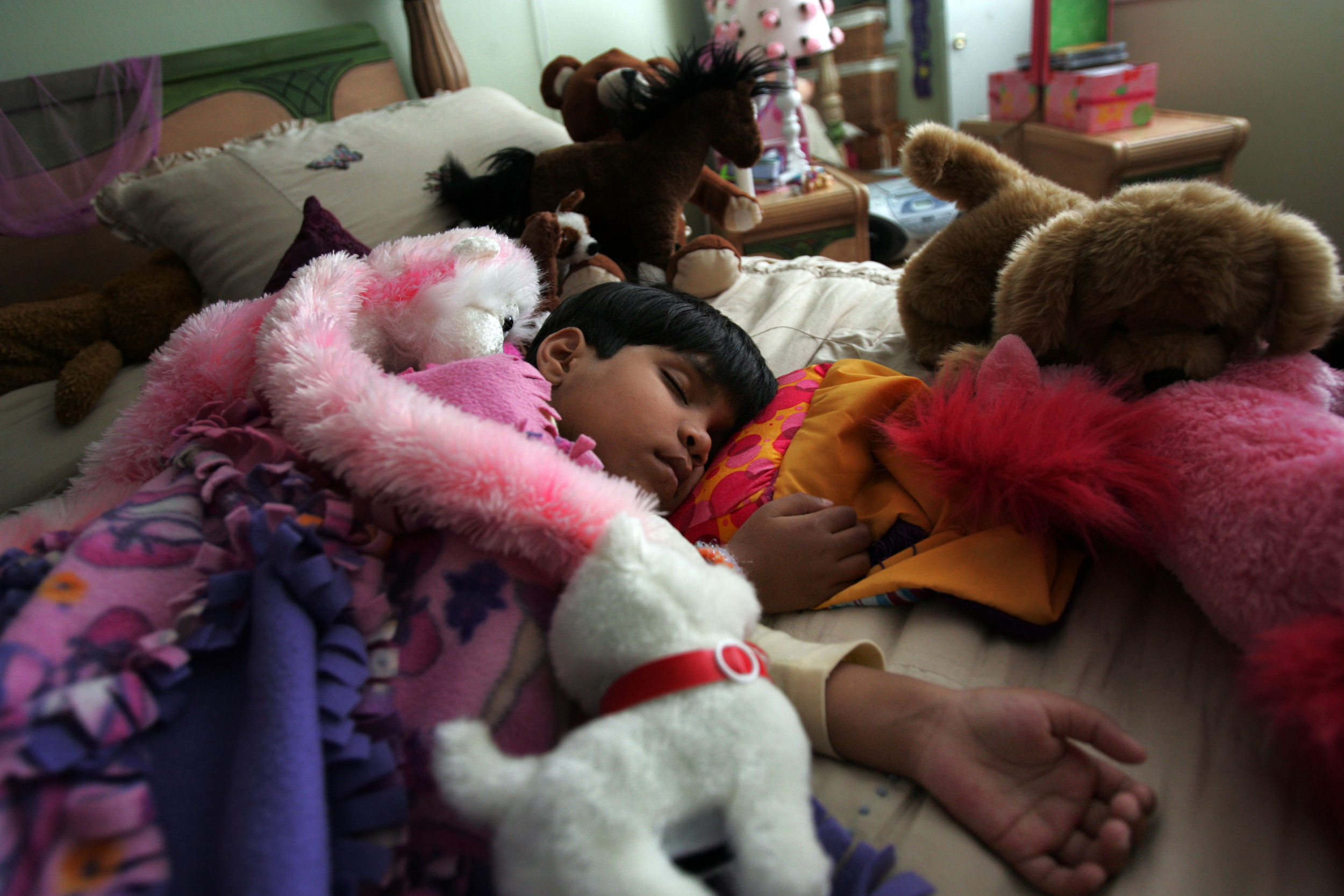 Kajal sleeps amongst a pile of stuffed animals at a host family's house during her nap Tuesday, April 10, 2007 in Franklin, Tenn. On Kajal's arrival to the US she was showered with toys.