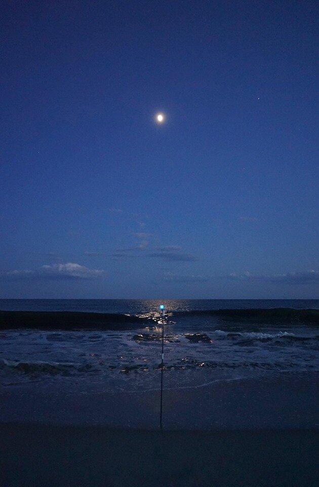 月光と集光.jpg