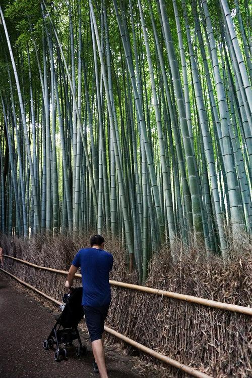 JPN_Kyoto_Bamboo pockit stroller.jpg