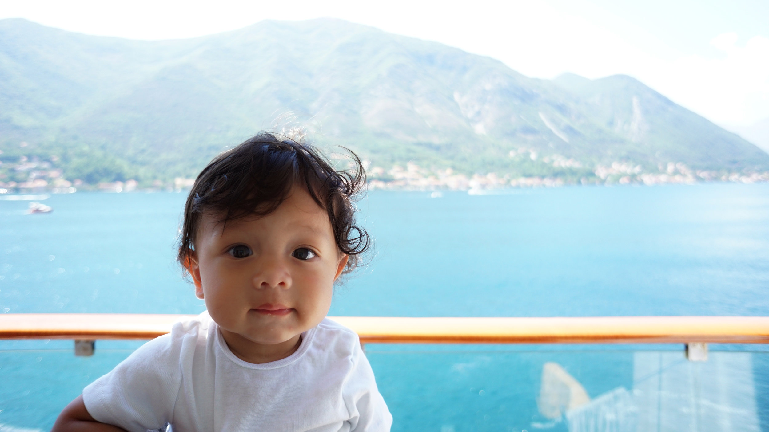 Orlo (7 months old) cruising through the Bay of Kotor