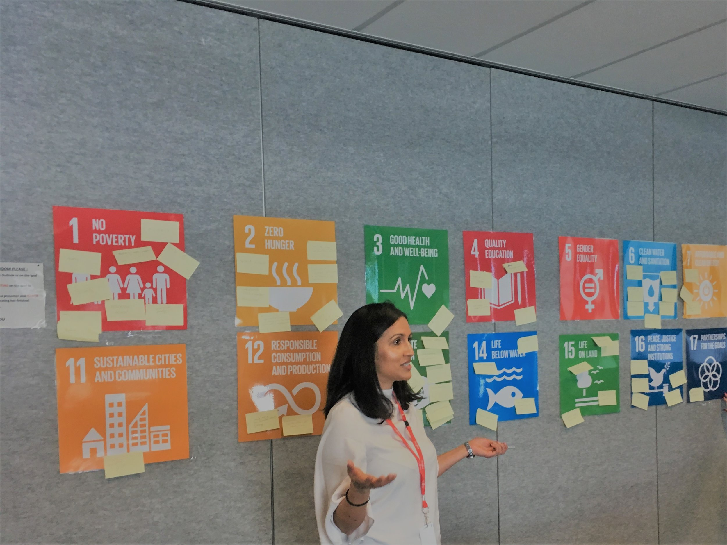 Delivering a 'Global Goals and You' Lunch and Learn session.