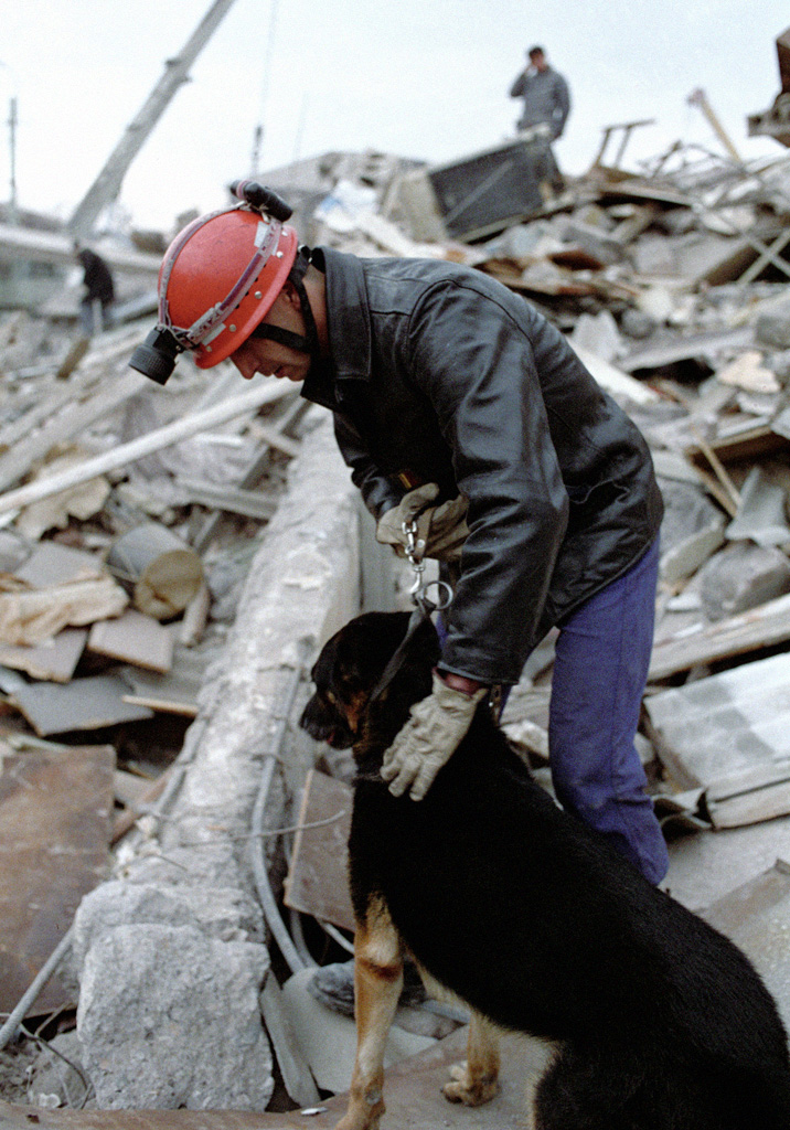 French rescuer with a dog searching through the rubble. Photo by Alexander Makarov.
