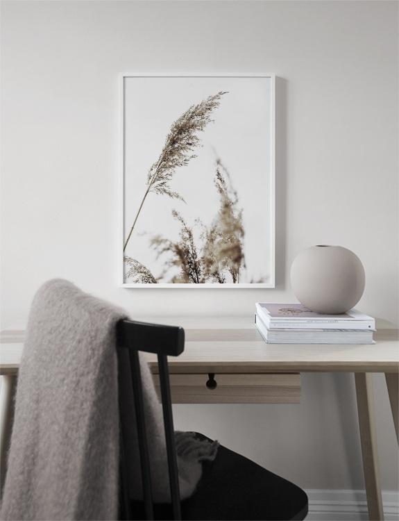 GRASS POSTER print from Desenio via The Online Shopping Expert