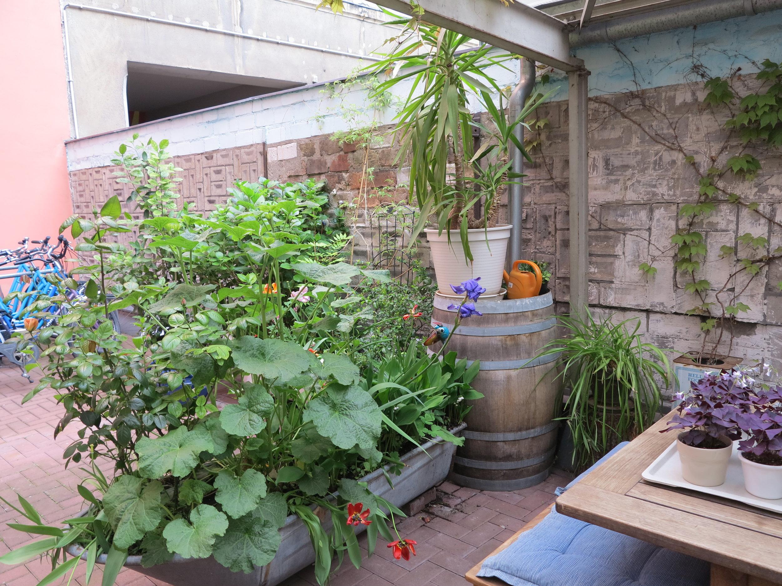 Idyllisch: der Garten im Innenhof
