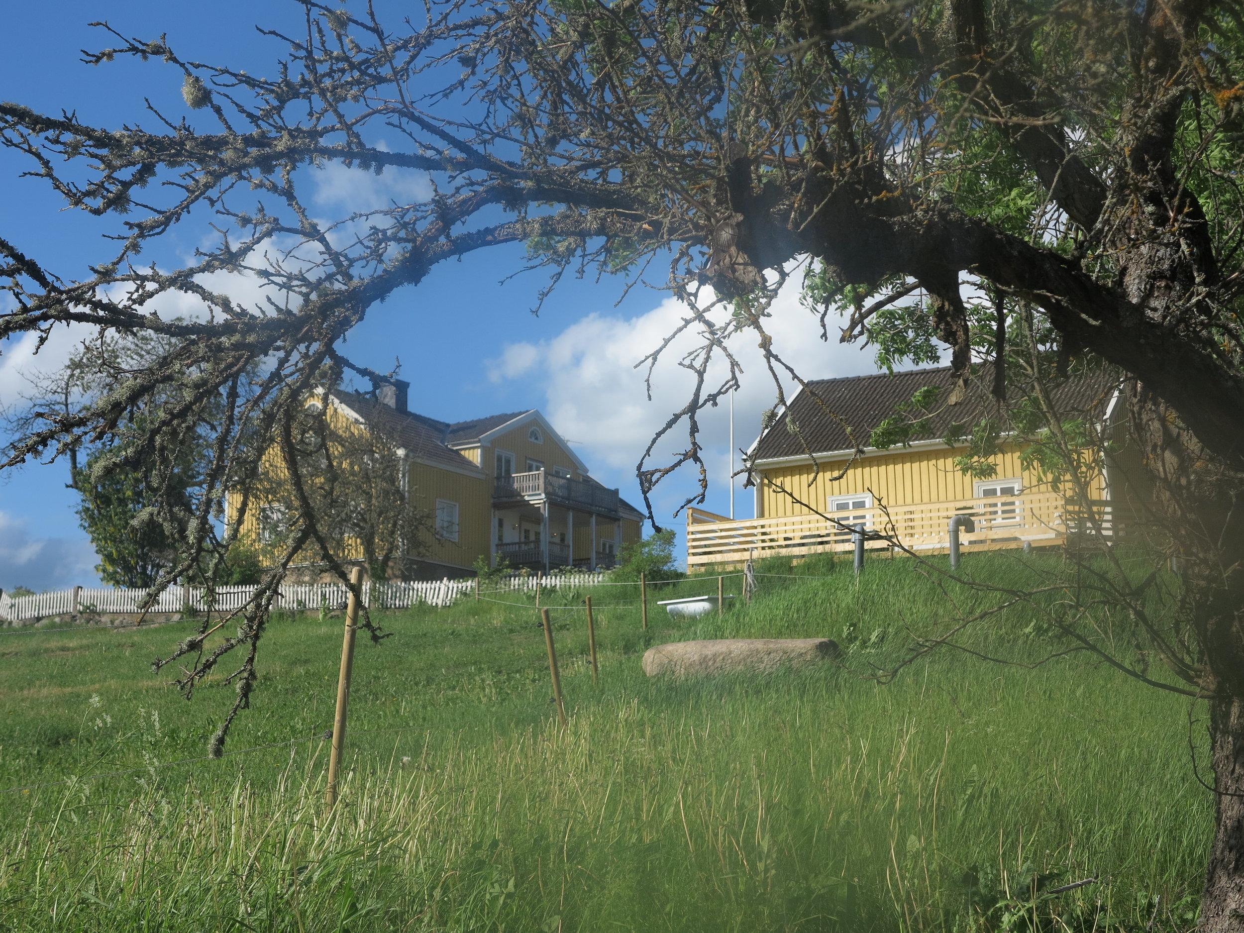 Unser kleines gelbes Haus mit großer Veranda und Traumblick über Wiesen und Wälder