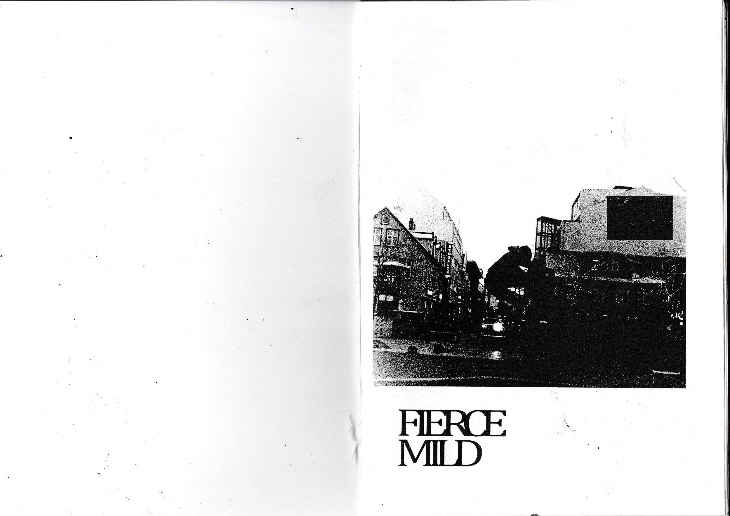 fm 1.jpg