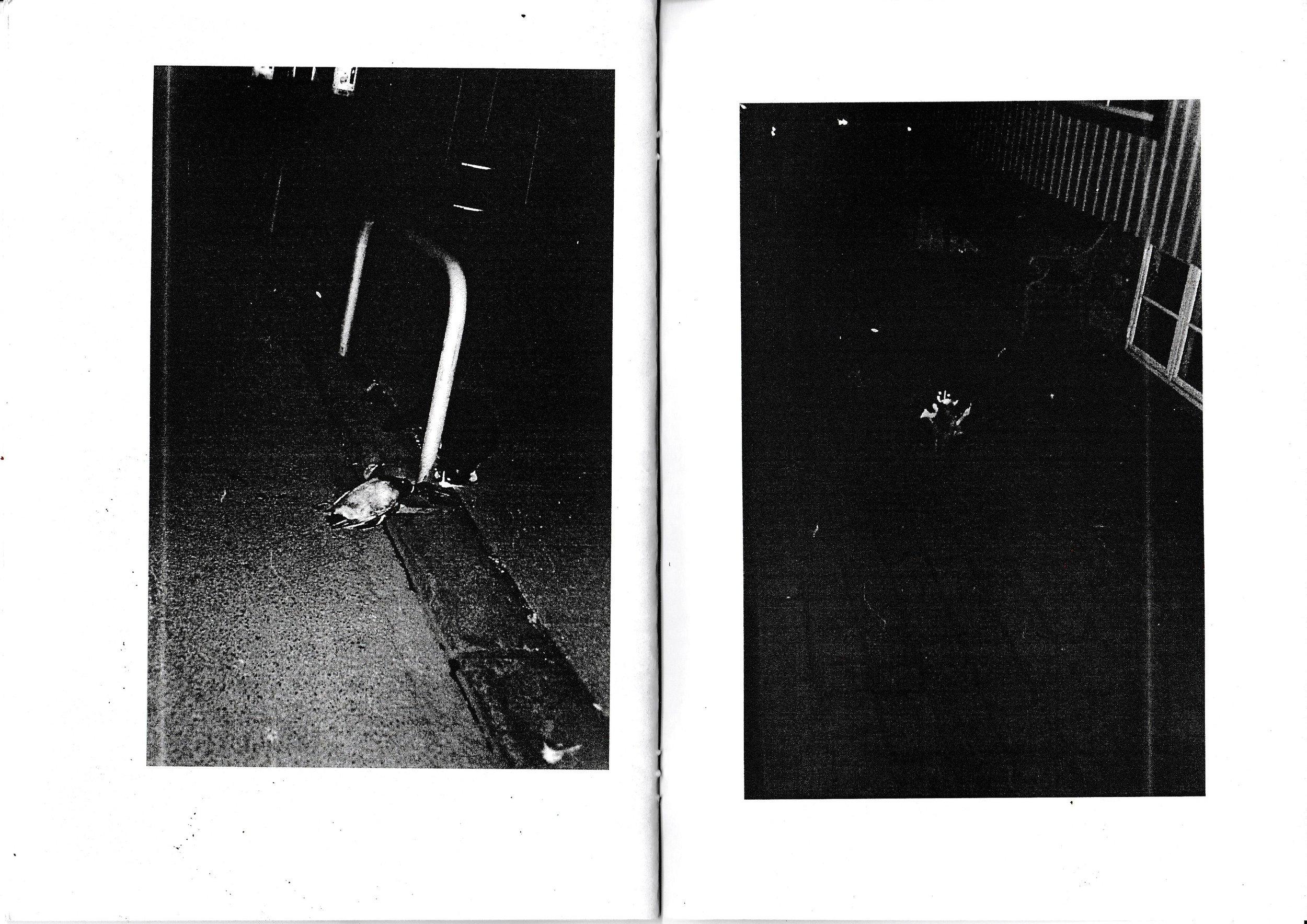 fm 14.jpg