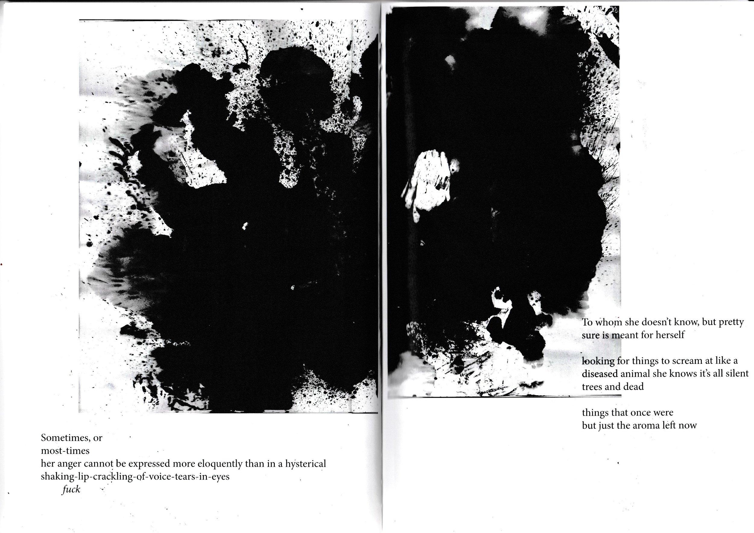 ip 14.jpg