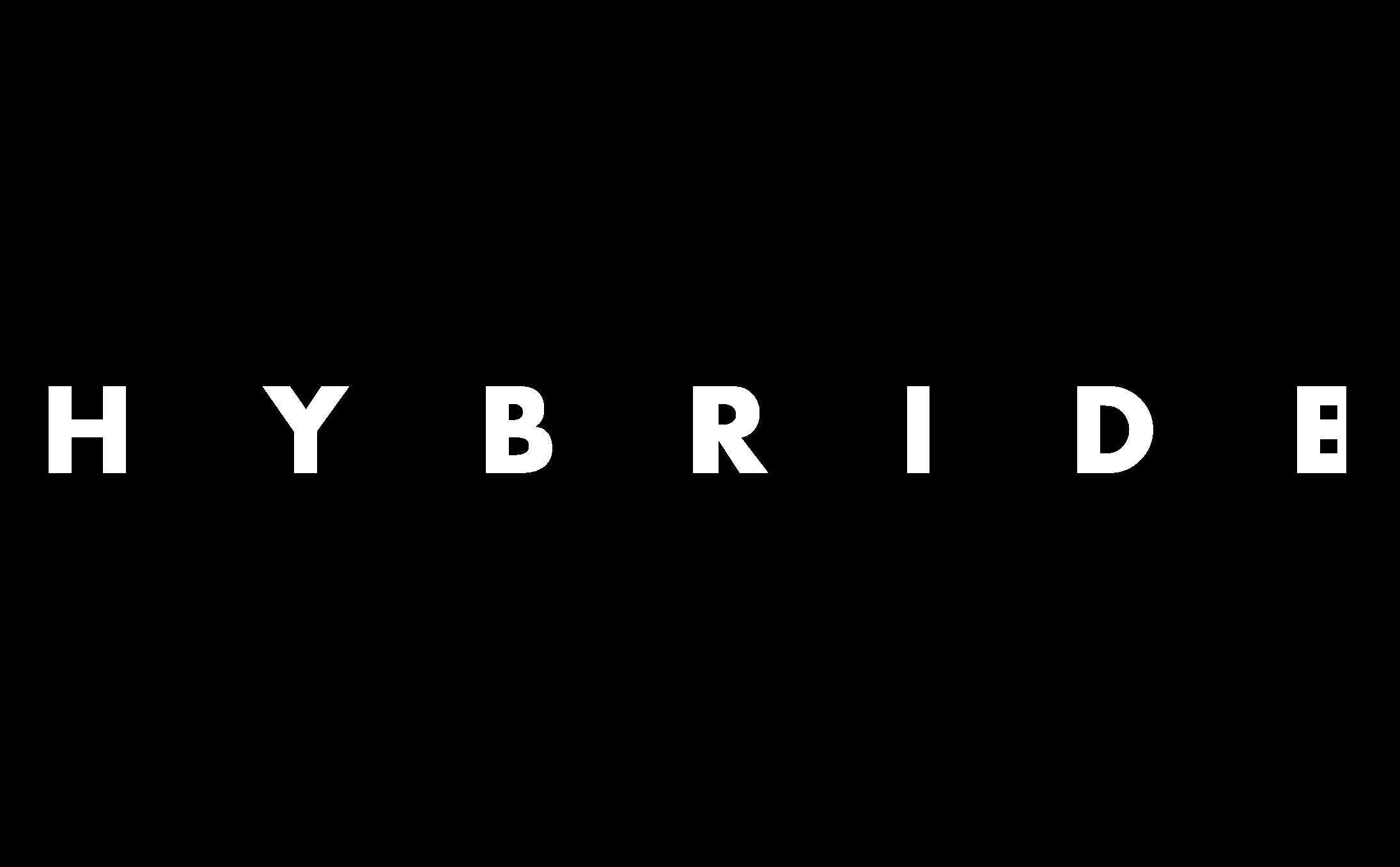 HYBRIDE.png