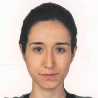 Researcher, TUBITAK, Future Trust Project, Emine Bircan