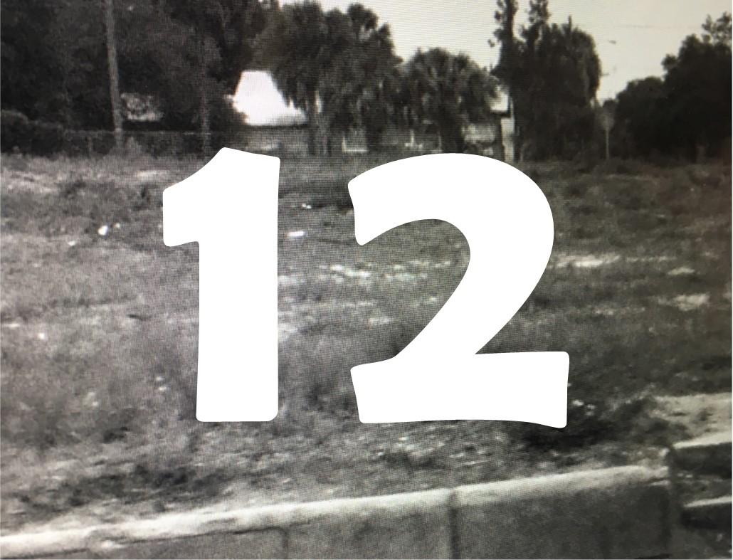 Episode 12 Image.jpg