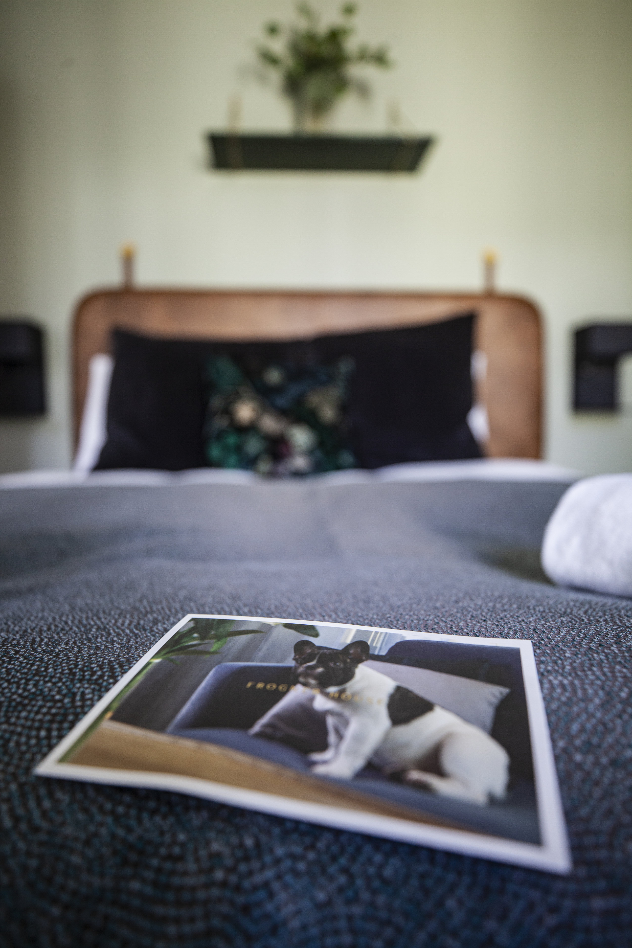 Send en hilsen! Et postkort er ett av elementene som skaper gjenkjennelse og er med på å forlenge merkevareopplevelsen på Frogner House.