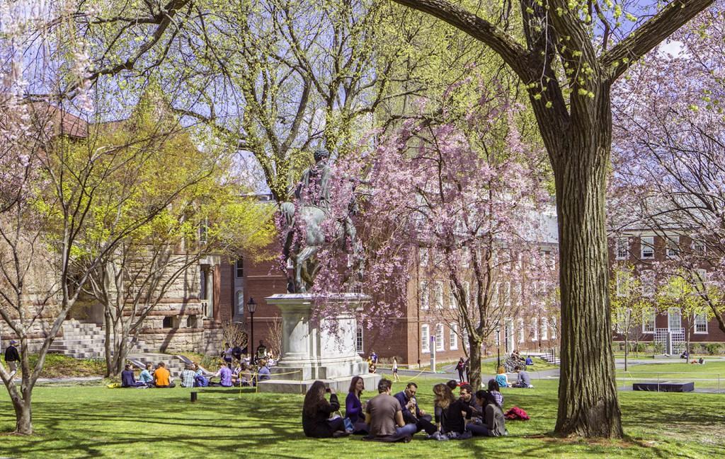 campus_flowers.jpg