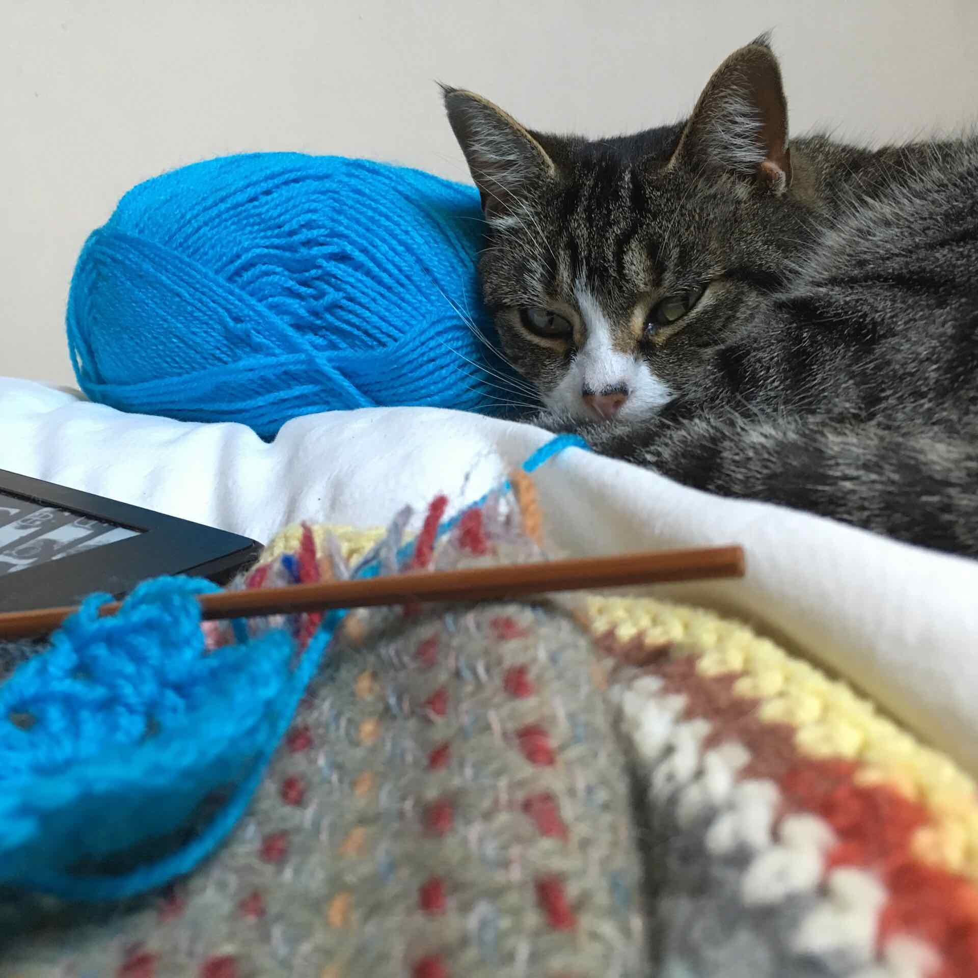 Crocheting with Ounce