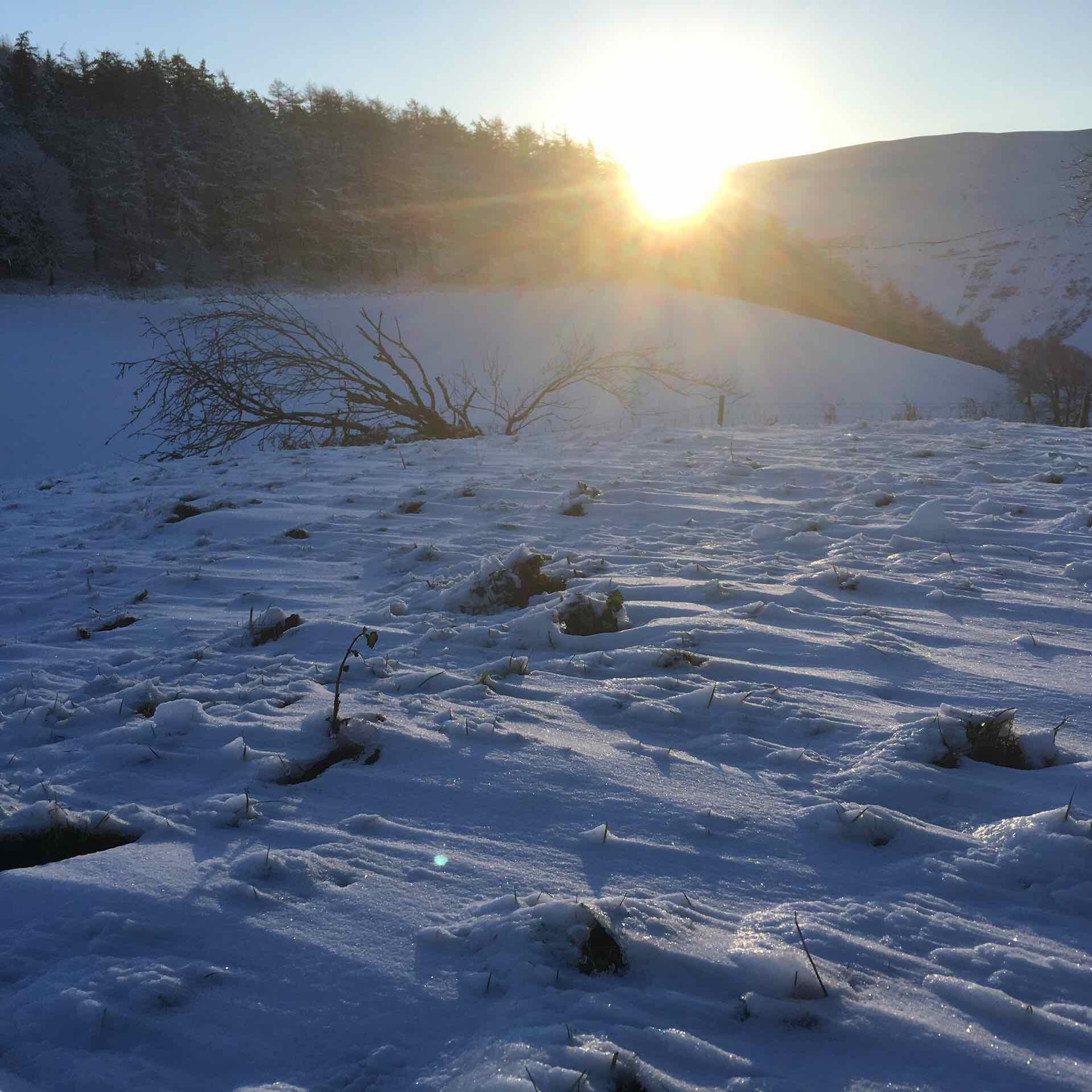 New Year's Day Sunrise