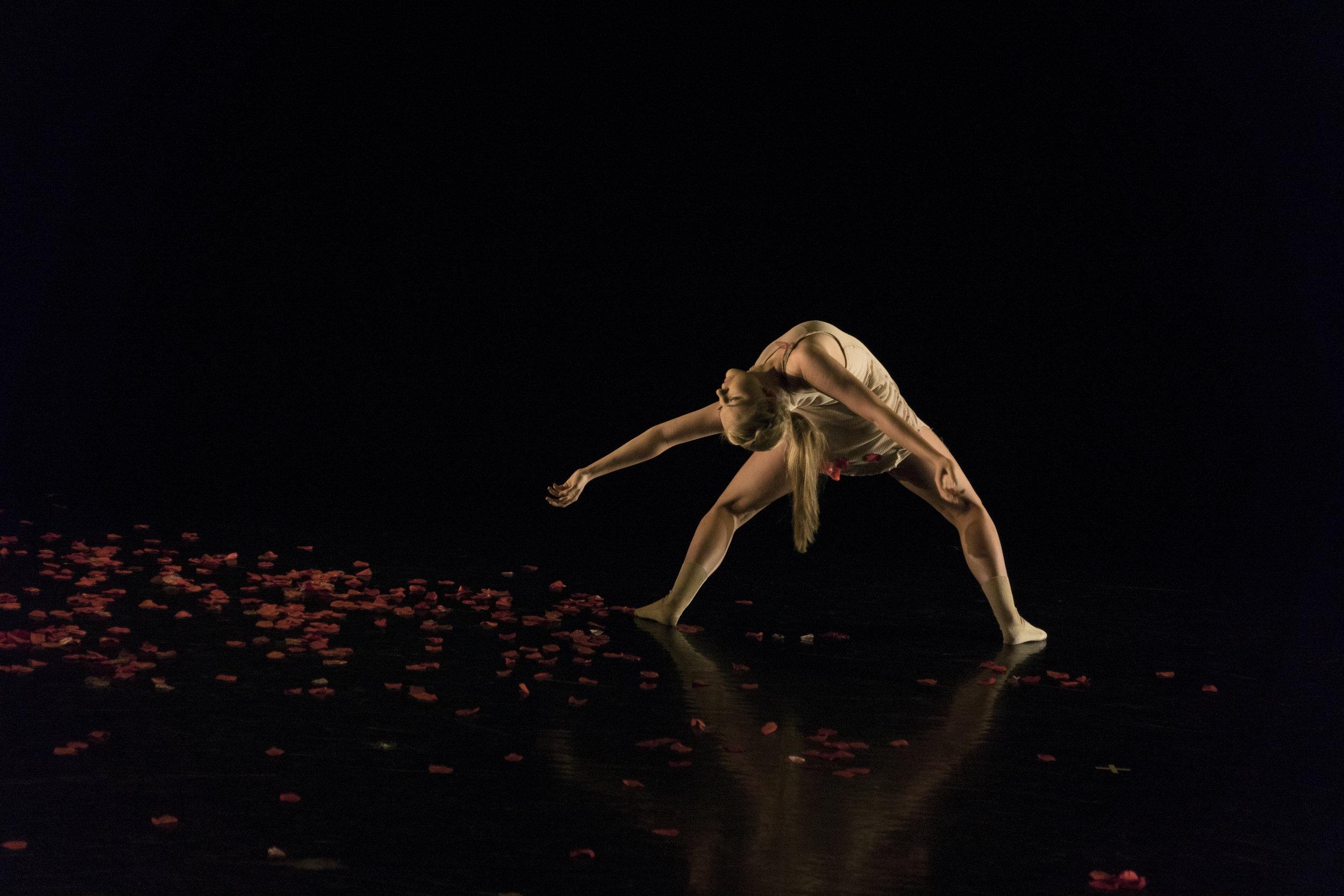 DanceTCU