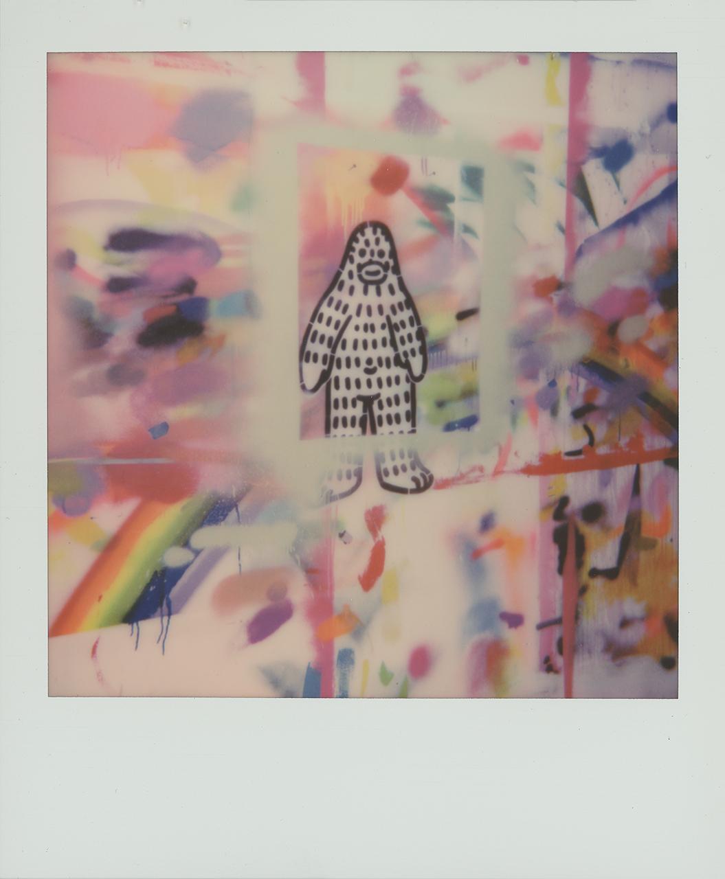 Frank Ape on Polaroid 600 film