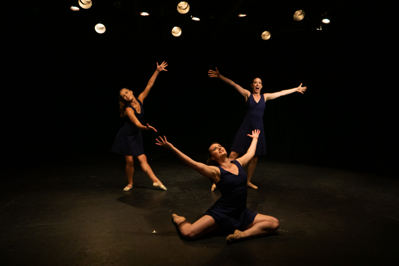 Sheep Meadow Dance Theatre