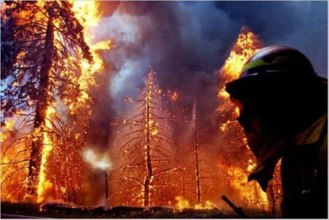 49er Fire, Nevada County 1998