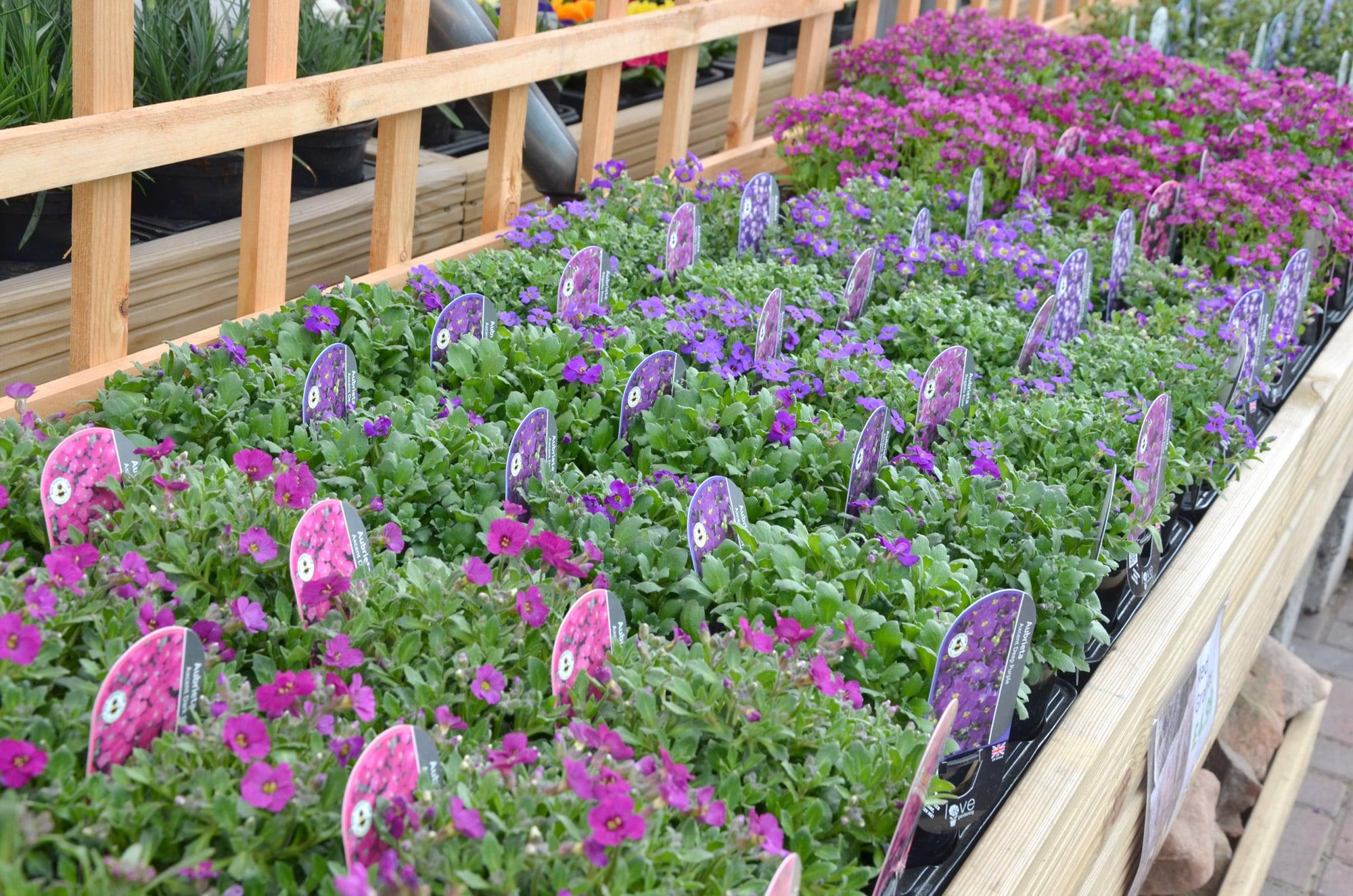 Lower-barn-gardencentre-pink-bedding-min.jpg