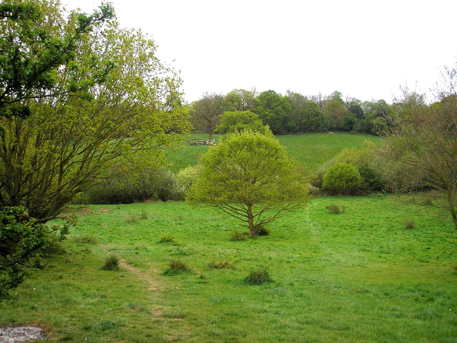View from Hilly Field to Cumborrow