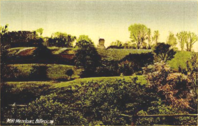 An old postcard of Mill Meadows