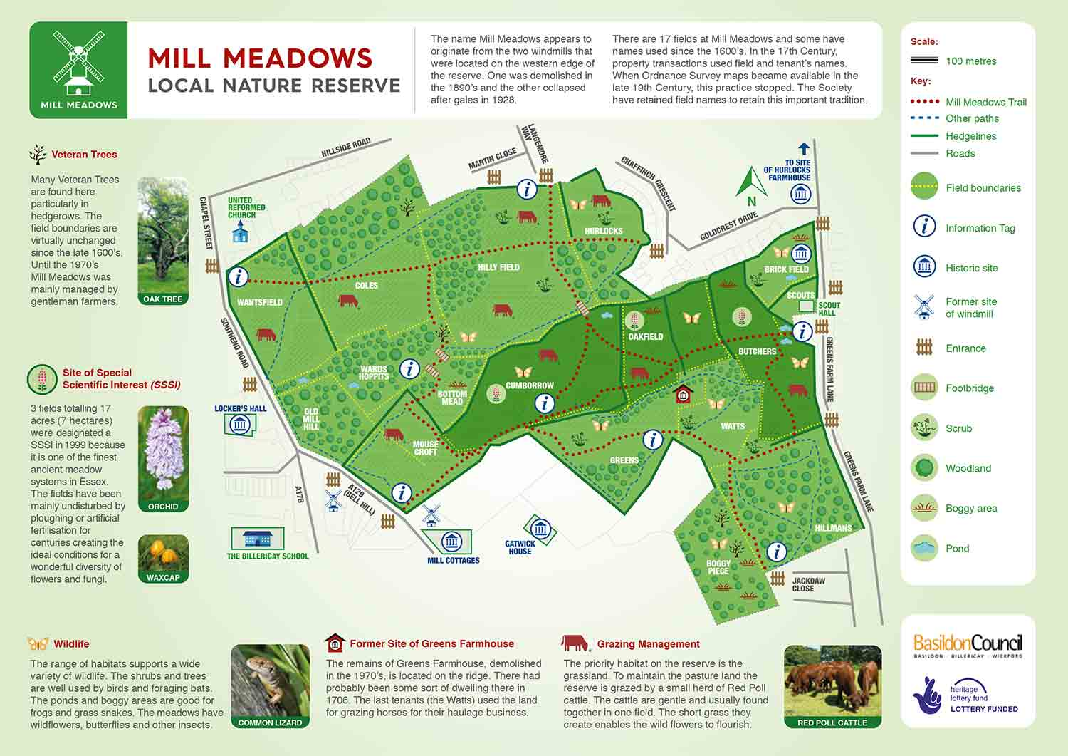 Mill Meadows nature reserve in Billericay Essex trail map
