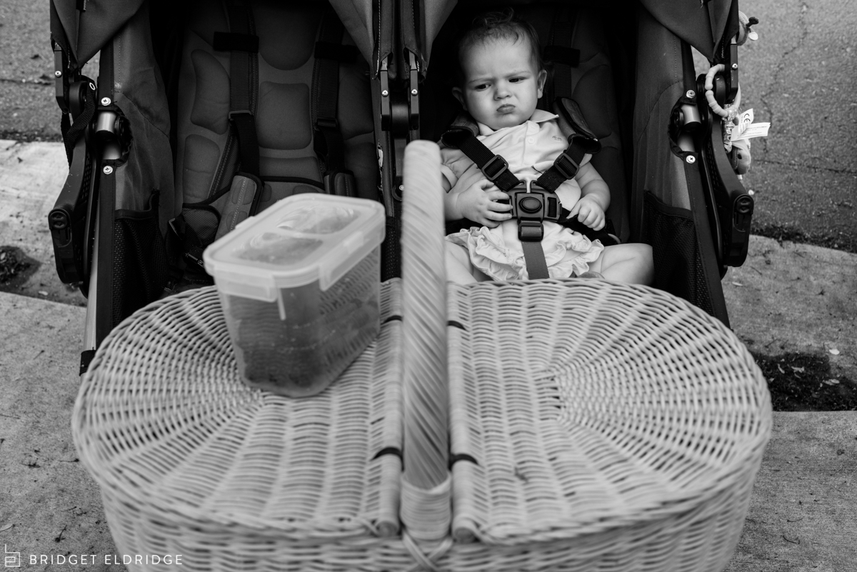 baby doesn't like sharing her stroller with a picnic basket